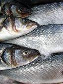 Постер, плакат: Рыбный рынок
