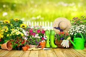 Gardening tools and flowers on the terrace in the garden poster