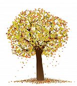 Autumn. Vector illustration of tree with yellow and red leaves