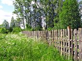 old fence in herb