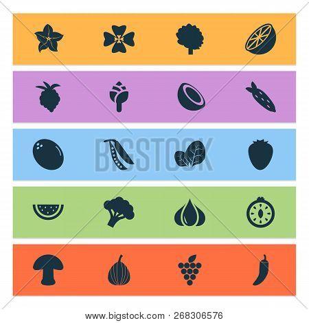 Vegetable Icons Set With Mushroom
