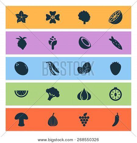 Food Icons Set With Mushroom
