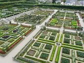 Vegetable gardens at the Chateau de Villandry
