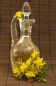 Hypericum oil with flowers