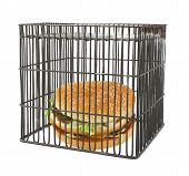 Diet Concept - Fast Food Behind Bars