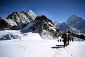 stock photo of sherpa  - this is a photo of climbers and sherpas making a glacier traverse on the way to mera peak - JPG