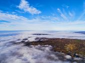 Aerial View Over Forest During Vibrant Autumn Colors. Aerial View Of Seashore And Clouds. Coastline  poster
