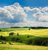 picture of farm land  - beautiful summer landscape - JPG