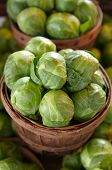 picture of brussels sprouts  - Brussel sprouts for sale in a basket on a open air market stall - JPG