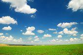 Paisaje de verano con el hermoso cielo y campos