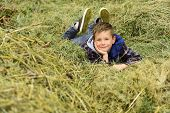 Happy And Carefree. Happy Boy. Little Boy Happy Smiling. Little Boy Enjoy Relaxing On Hay. Its Where poster