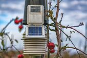 Solar Powered Meteorology Station On The Apple Plants poster
