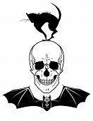 Skull, Cat And Bat