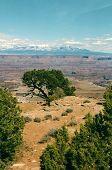 Clinging to the Edge - Utah