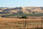 Wine country hills