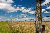 barbed wire fence, Kansas pasture
