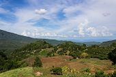 foto of hmong  - Hut And Farm Hmong On The Mountain In Chiangmai Province - JPG