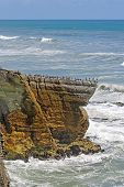 foto of promontory  - Spotted Shags on a Promontory in New Zealand - JPG