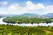 stock photo of moselle  - famous Moselle Sinuosity in Trittenheim in afternoon sun - JPG