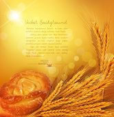 vector background with gold ears of wheat, bun, sunrays