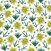image of narcissi  - Illustration of seamless floral background from narcissi isolated - JPG