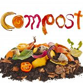 pic of discard  - compost  pile soil of kitchen scraps close up isolated on white background - JPG