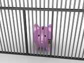Pig Money Box In Prison