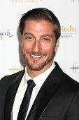 LOS ANGELES - JAN 11:  Daniel Lissing at the Hallmark Winter TCA Party at The Huntington Library on