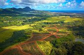 Aerial View Kauai Fields