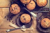 stock photo of sponge-cake  - Chocolate chip muffins on cooling rack - JPG