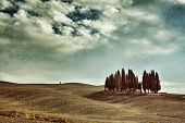 foto of senesi  - Idyllic Tuscany rural landscape near Pienza Vall d - JPG
