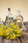 stock photo of cruciferous  - Rape flower on wooden table - JPG