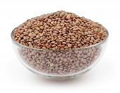 Green Lentils Isolated On White Background With Clipping Path