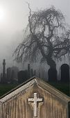 stock photo of headstones  - Spooky old weathered headstone in a foggy graveyard - JPG