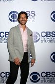 LOS ANGELES - MAY 19:  Adam Rodriguez at the CBS Summer Soiree at the London Hotel on May 19, 2014 i