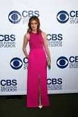 LOS ANGELES - MAY 19:  Anna Wood at the CBS Summer Soiree at the London Hotel on May 19, 2014 in West Hollywood, CA