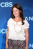 LOS ANGELES - JUN 16:  Marcia Gay Harden at the