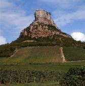 The Vineyards Of Solutré-pouilly