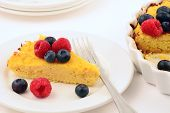 picture of cheesecake  - Homemade fresh baked ricotta and coconut flour cheesecake for a gluten free treat - JPG