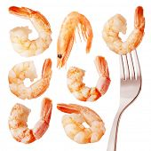 Cooked king size shrimps with tails, isolated on white background