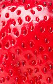 extreme macro red strawberry, background