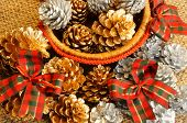 Abstract Pine Cone, Xmas Season