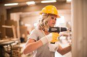 Female carpenter using screwdriver