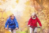 Постер, плакат: Active seniors ridding bike