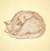 Sketch Sleeping Cat T In Vintage Style