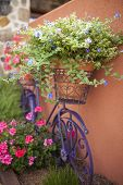 decorative bicycle with flowers, gardening background