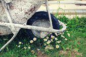 foto of planters  - Rusty metal wheelbarrow as a flower bed planter in the garden - JPG