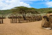 picture of mud-hut  - Traditional masai village in Tanzania Africa - JPG