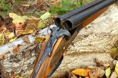 A Wooden Retro Shotgun
