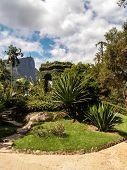 Christ Redeemer Behind Botanical Gardens